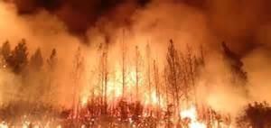 Guarda la versione ingrandita di Incendi in California