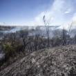YOUTUBE Roma, incendio a Monte Mario: sgombero struttura anziani FOTO4