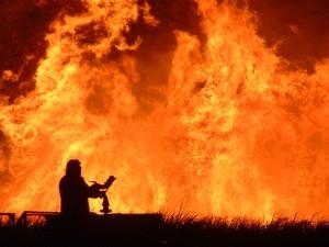 Guarda la versione ingrandita di Salento, incendi sul litorale: evacuati due agriturismi e case