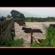 YOUTUBE India: crolla ponte a Mahad, morti e...3