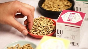 Guarda la versione ingrandita di Mangiare insetti, la tendenza del futuro è già realtà in Francia e Olanda