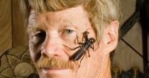 Si è fatto pungere 1000 <br /> volte da 83 insetti diversi