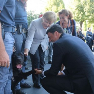 Guarda la versione ingrandita di Vertice Italia-Germania. Merkel: