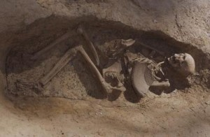 Lucy, nostra antenata australopiteca, morì cadendo dall'albero