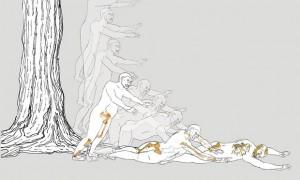 Lucy, nostra antenata morta cadendo da albero...3 milioni di anni fa