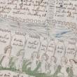 Voynich: libro di magia più misterioso al mondo, nessuno ha mai tradotto codice