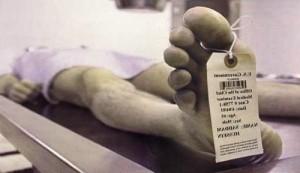 Guarda la versione ingrandita di Bolzano: morto nel 2008 non può essere sepolto perchè...