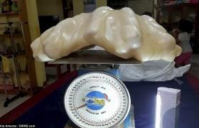 La maxi perla tenuta nascosta per 10 anni <br /> Pesa 34 kg e vale oltre 100 milioni di dollari