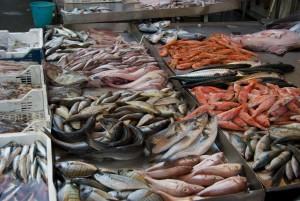 Pesce fresco a rischio: scatta il fermo pesca nel Mar Adriatico