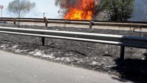 Pontina in fiamme, la storia nascosta degli incendi