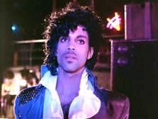 Guarda la versione ingrandita di Prince