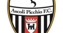 Pro Vercelli-Ascoli, streaming e diretta tv: dove vedere Serie B