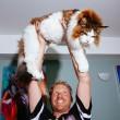 Samson gatto più grande del mondo4