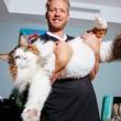 Samson gatto più grande del mondo