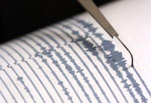Terremoto, scossa di magnitudo