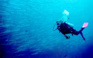 Stintino, Angelo Franci, sub, muore durante una battuta di pesca