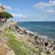 Ventimiglia, migranti sfondano confine: a nuoto fino in Francia, occupano scogliera01