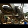 Anaconda lunga 10 metri spostata con escavatore4