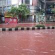 Dacca, festa del sacrificio e monsoni3