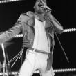 Freddie Mercury, 70 anni fa nasceva la voce dei Queen