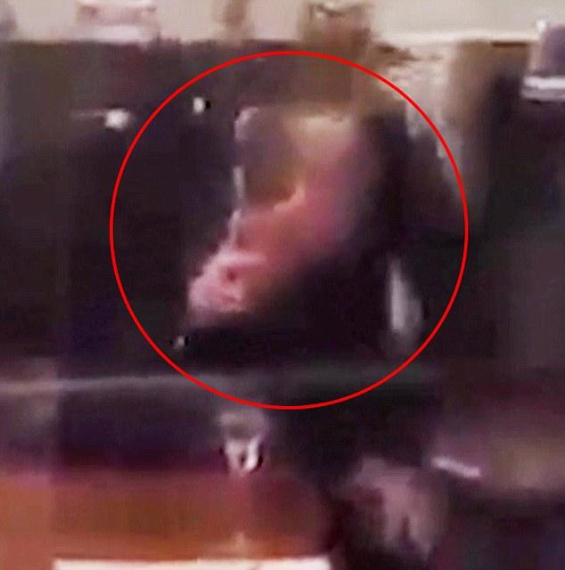 Londra, guardia della Regina sta sniffando cocaina Aperta un'inchiesta