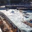 Messina, nave da crociera Carnival Vista provoca mini tsunami 11