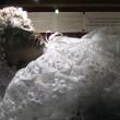 Santa bambina morta 300 anni fa apre occhi 3