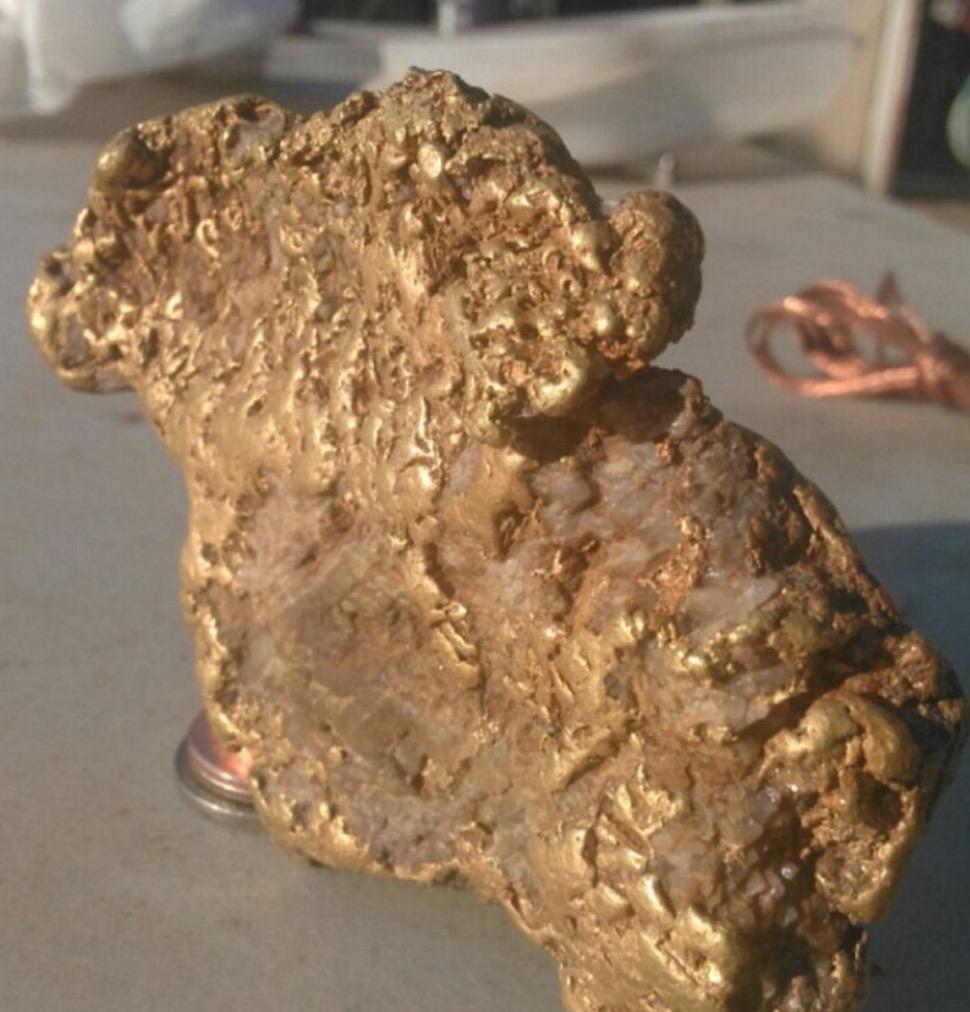 Usa, trova pepita d'oro da mezzo chilo: vale 70mila dollari FOTO 2