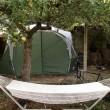 """Londra, proposta Airbnb: """"Un posto in tenda a 800 euro al mese"""" 4"""