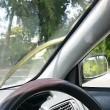 Serpente spunta dal motore e si attacca su finestrino auto in corsa2