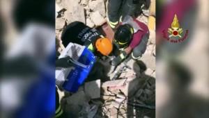 Terremoto: gatto Pietro vivo dopo 16 giorni sotto le macerie