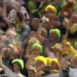 Tifosi Feyenoord lanciano peluche 3