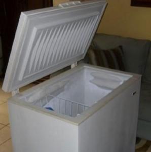 Vende il congelatore: dentro c'erano i resti di sua madre
