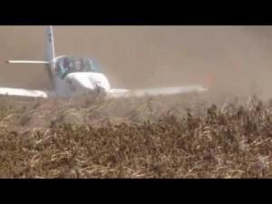 Guarda la versione ingrandita di  Aereo supera pista durante atterraggio e si ferma su campo patate
