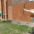 VIDEO YOUTUBE Tiro con l'arco con...i piedi: e centra il bersaglio 3
