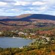 Canada, isola disabitata cerca lavoratori: ti regalano la terra ma... 6