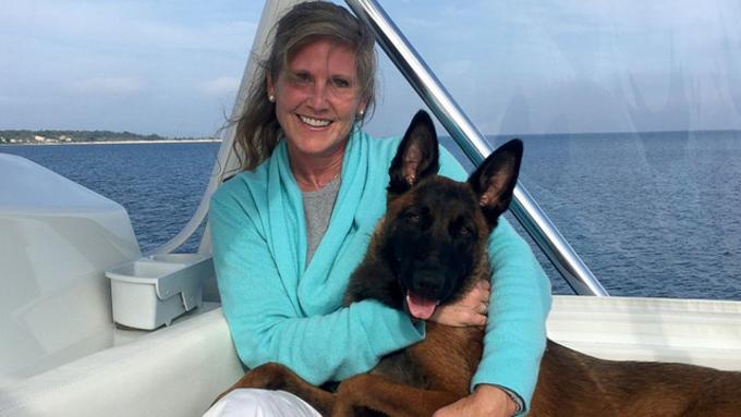 Cane cade dalla barca: nuota per 10 km per tornare dai padroni