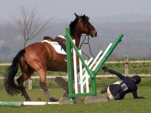 Manzano (Udine), ragazzina calpestata da cavallo dopo una caduta: è gravissima