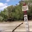 VIDEO YOUTUBE Dozzine di coccodrilli assaltano auto nella strada allagata 2
