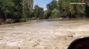 Guarda la versione ingrandita di VIDEO YOUTUBE Dozzine di coccodrilli assaltano auto nella strada allagata