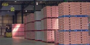 Cocaina nello stabilimento della Coca Cola: maxi sequestro in Francia