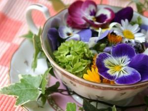 Fiori da... mangiare: dalla viola alla petunia, belli, buoni, sani