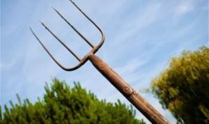 Peschiera del Garda, aggredisce vicina con forcone: arrestata per tentato omicidio