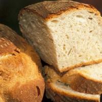 Bufala, multato per aver regalo due euro di pane