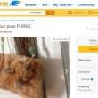 Il gatto imbalsamato trasformato in borsetta: venduto all'asta per 360€01