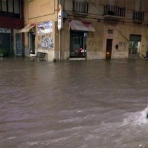 Guarda la versione ingrandita di Maltempo, albero cade su pensilina bus a Roma. Allerta nubifragi su Centro Nord