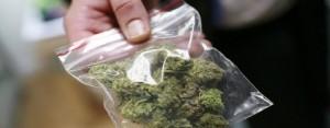 Marijuana lanciata dalla finestra, finisce in testa agli agenti