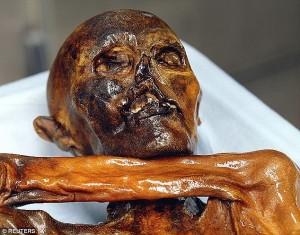Guarda la versione ingrandita di Otzi, svelati i segreti della più antica mummia europea FOTO-VIDEO
