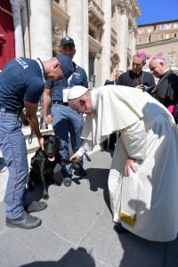 Papa Francesco accarezza Leo, cane eroe. E indossa berretto polizia