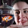 Pesce rosso ingoia un sassolino: intervento da 500 euro per salvarlo01